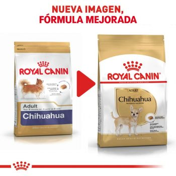 Royal Canin Chihuahua wet 85 gr lata